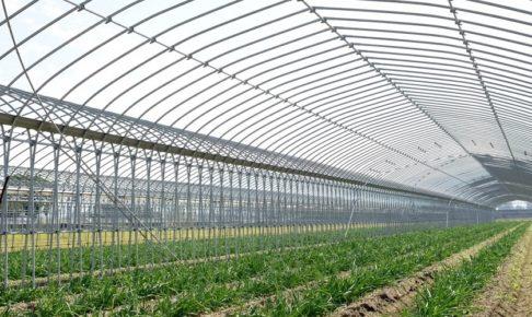 スマート農業が日本の一次産業を変える?